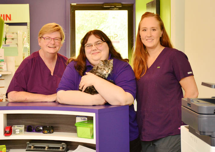 Veterinary Care in Normal and Bloomington IL