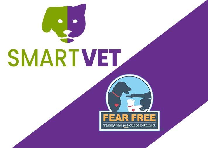 fear-free-certified-vet-in-normal-illinois